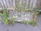 Fallen kerbstones already reported but the weeds are causing the problem and they need to be treated before kerbstones replaced, otherwise we will incur the same problem again. The corner of Valentia close and down annesley close is all affected. Please inspect.