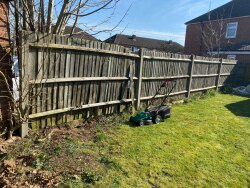 Photo of this report